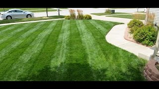 Mowing Stripes In Grass | Single, Double, Single, Double Twist