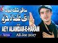 Ali Jee | Aye Alamdar E Haram | 2017 / 1...mp3