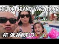 Hilton Grand Vacations at Seaworld!mp3