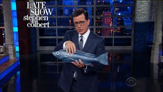Stephen Takes A Front-Stab At Scaramucci