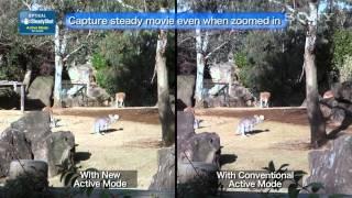 Sony Cybershot vs. Your Camera Phone?