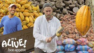 Brad Makes Chocolate in Ecuador: Part 1 | It
