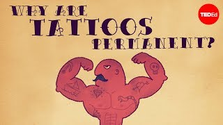 What makes tattoos permanent? - Claudia Aguirre