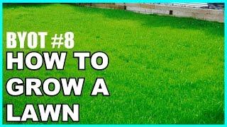 DIY: Yard/Lawn Restoration - BYOT #8