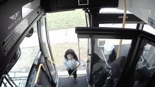 Bus Driver Pulls Over to Help Lost Girl Trying to Find Her Way Home