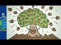 When Trees Go Nutsmp3