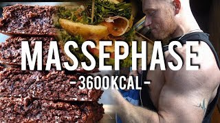 MASSEPHASE I 3600 Kcal I MAX BANKDRÜCKEN - Schmale Schulter