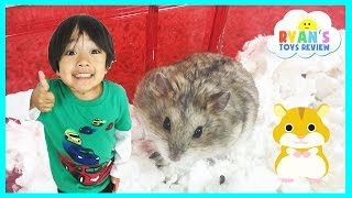 Ryan ToysReview first pet Buying Hamster from PetSmart