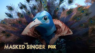 The Clues: Peacock   Season 1 Ep. 9   THE MASKED SINGER
