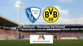 Testspiel: VfL Bochum - Borussia Dortmund