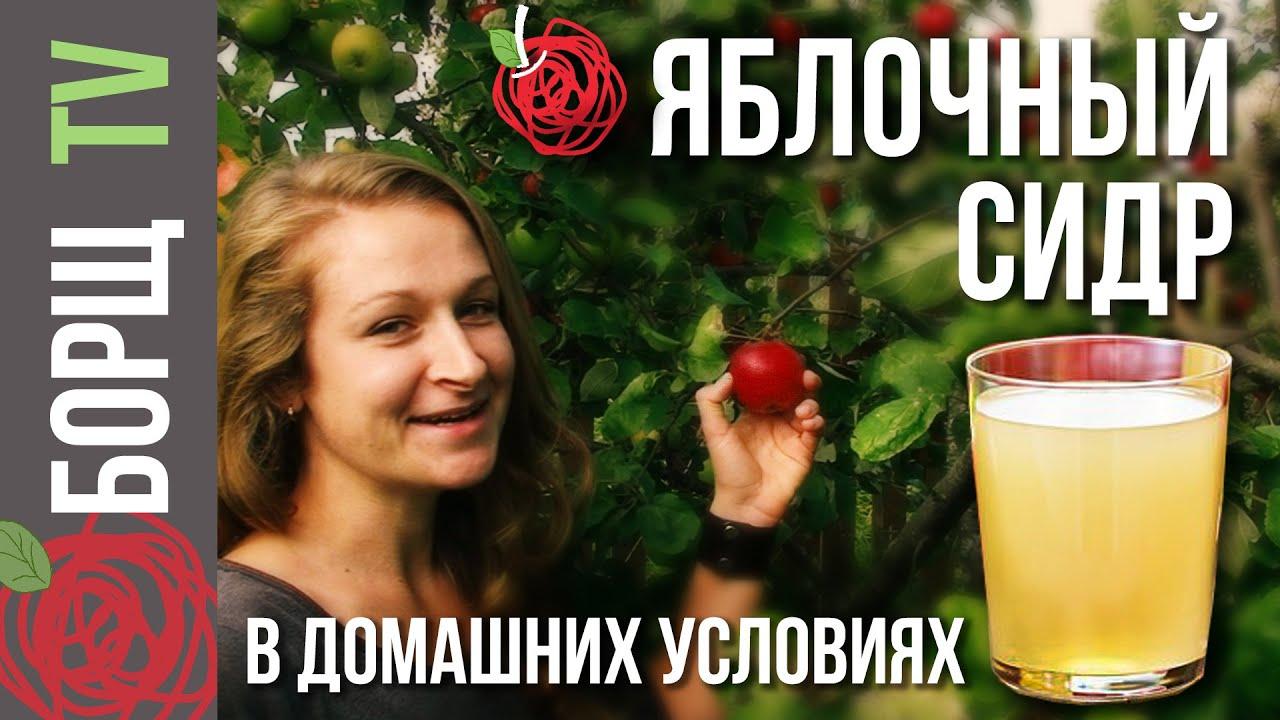 Сидр рецепт из сока в домашних условиях