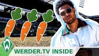 Möhren im Weser-Stadion, was macht Serge Gnabry im Sommer? | WERDER.TV Inside vor Dortmund