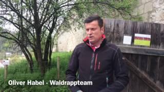 Waldrappen in Burghausen