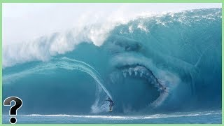 What If Megalodon Sharks Didn