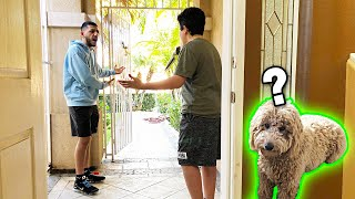 My little cousin LET MY DOG RUN AWAY!! *I freaked out*