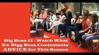 Big Boss 11 : Watch What Ex Bigg Boss Contestants