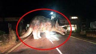 10 Dinosaurier - Die im echten Leben gefilmt wurden!