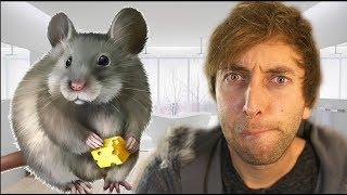 Ratte im Badezimmer!!!  Torgshow#53