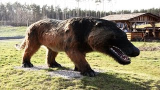19 Terrifying Animals You