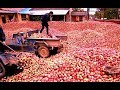 How Apple Juice Made in Factory? - Apple...mp3