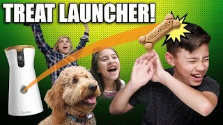 DOG TREAT LAUNCHER PRANK!!! Chloe Gets a Furbo Dog Camera, Babble Ball & Bark Box!