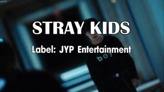 STRAY KIDS | Members Profile | Hellevator MV