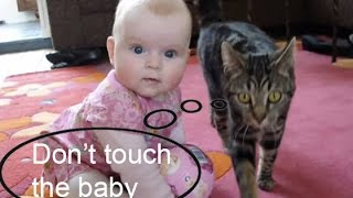 Amazing Cat protecting babies