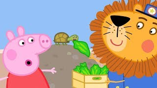 Peppa Pig English Episodes | 🦁️ The Zoo 🦁️ | Peppa Pig Official