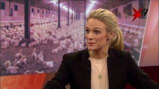 Ria Rehberg über Tierquälerei in Hühnermastbetrieb - der ganze Talk | stern TV (03.05.2017)
