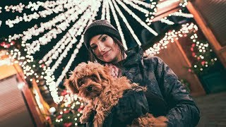 Alfies Weihnachtsreise