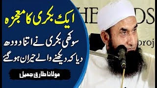 [Miracle] Ek Bakri Ka Mojza Latest Bayan by Maulana Tariq Jameel 2017   SC#02