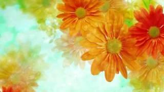سورة يوسف - القارئ يوسف كالو  \ Surat Yusuf  - Yousef Kalo