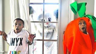 Bunny vs Human Carrot? - Rabbit GONE WILD Shasha And Shiloh - Onyx Kids