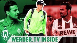 Wie fit ist Max Kruse? Jubelverbot für Claudio Pizarro? | WERDER.TV Inside vor FC Köln