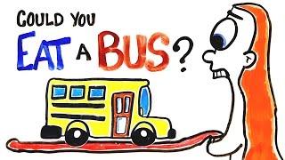 Can You Actually Eat A Bus?