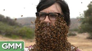 10,000 Bees Beard