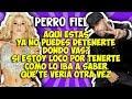 Shakira ft Nicky Jam -  Perro fiel (Letr...mp3