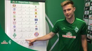 WIESENHOF: Werder Experten-Tipp 18. Spieltag 16/17