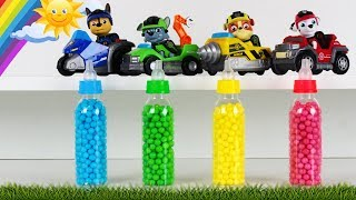 Learn Colors with Bottles, Cups, Balls and Paw Patrol Toys for Kids and toddlers