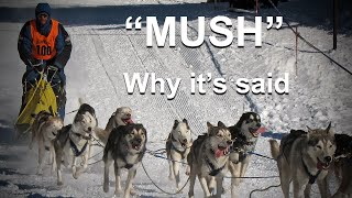 """Why Do They Say """"Mush"""" to Make Sled Dogs Go"""