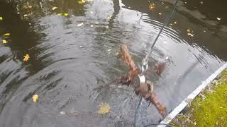 magnet fishing oops i broke someones heart