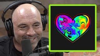 Joe Rogan: Success Without Love is Like Cement Without Water