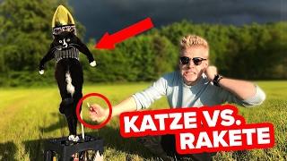 EXPERIMENT - KATZE vs RAKETE !!! 😱💥 II RayFox