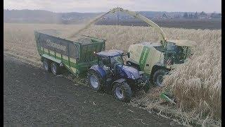 Elefantengras häckseln | Holz hacken | Krone BIG X 770 | New Holland | Agrarprofi - Agriculture