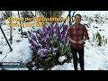 Märzwinter mit Eis und Schnee: Was sage...mp3