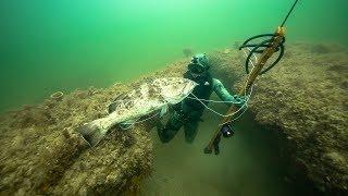 Spearfishing for GIANT Grouper In Ocean!! (Dangerous shot) | Jiggin