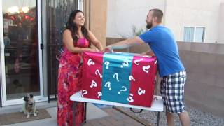 BEST Baby Gender Reveal Party!! Watch til the end!
