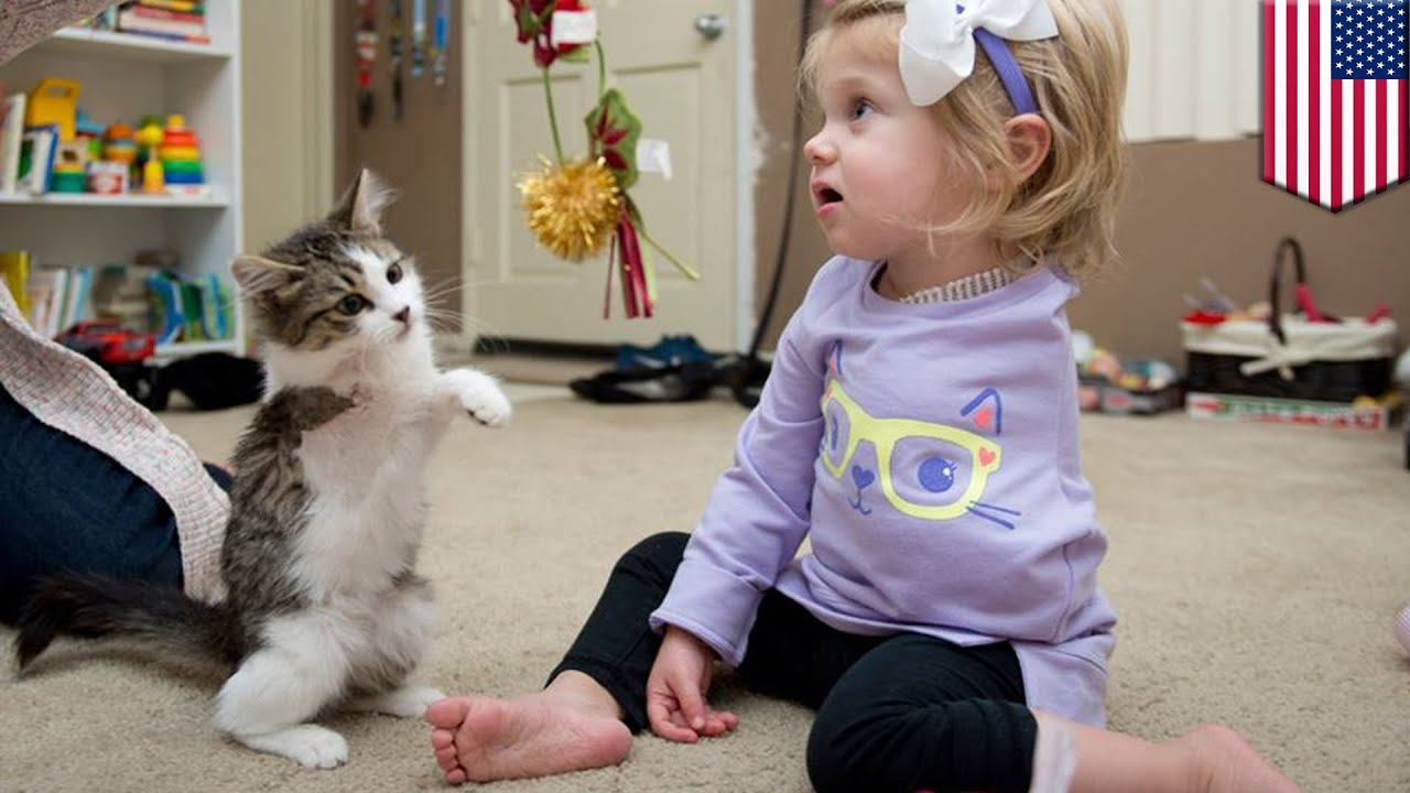 Сколько лет lil miss kitty 3 фотография