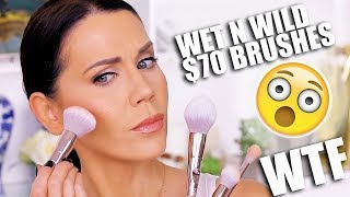 WET N WILD $70 MAKEUP BRUSHES ... WHY?