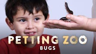 Bugs   HiHo Petting Zoo   HiHo Kids